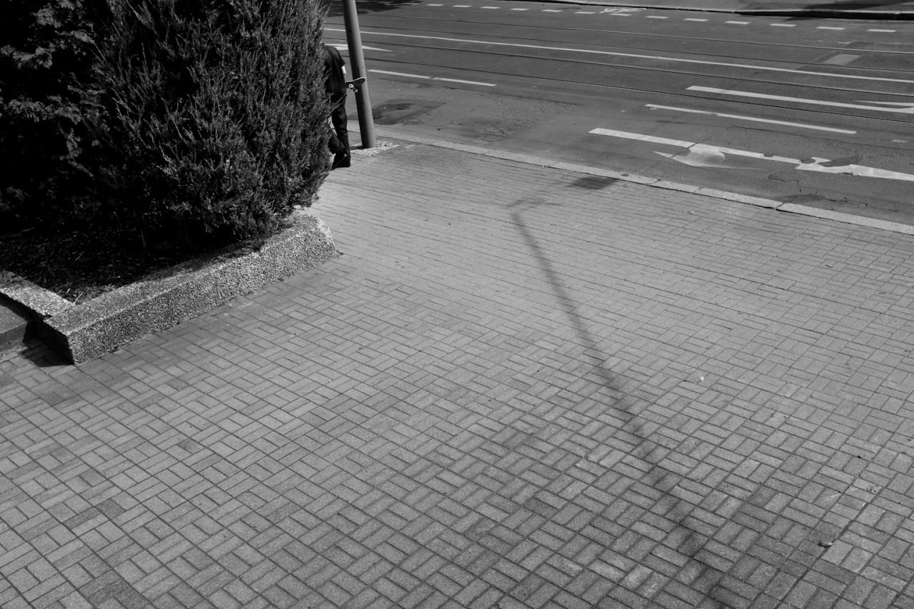 Biemer Converse 68hs Berlin